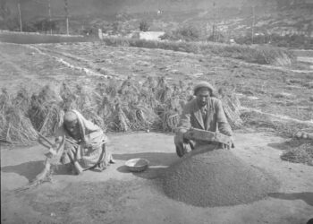 """The Truth, Myths, and Lies About the Health and Diet of the """"Long-Lived"""" People of Hunza, Pakistan, and Hunza Bread and Pie Recipes"""
